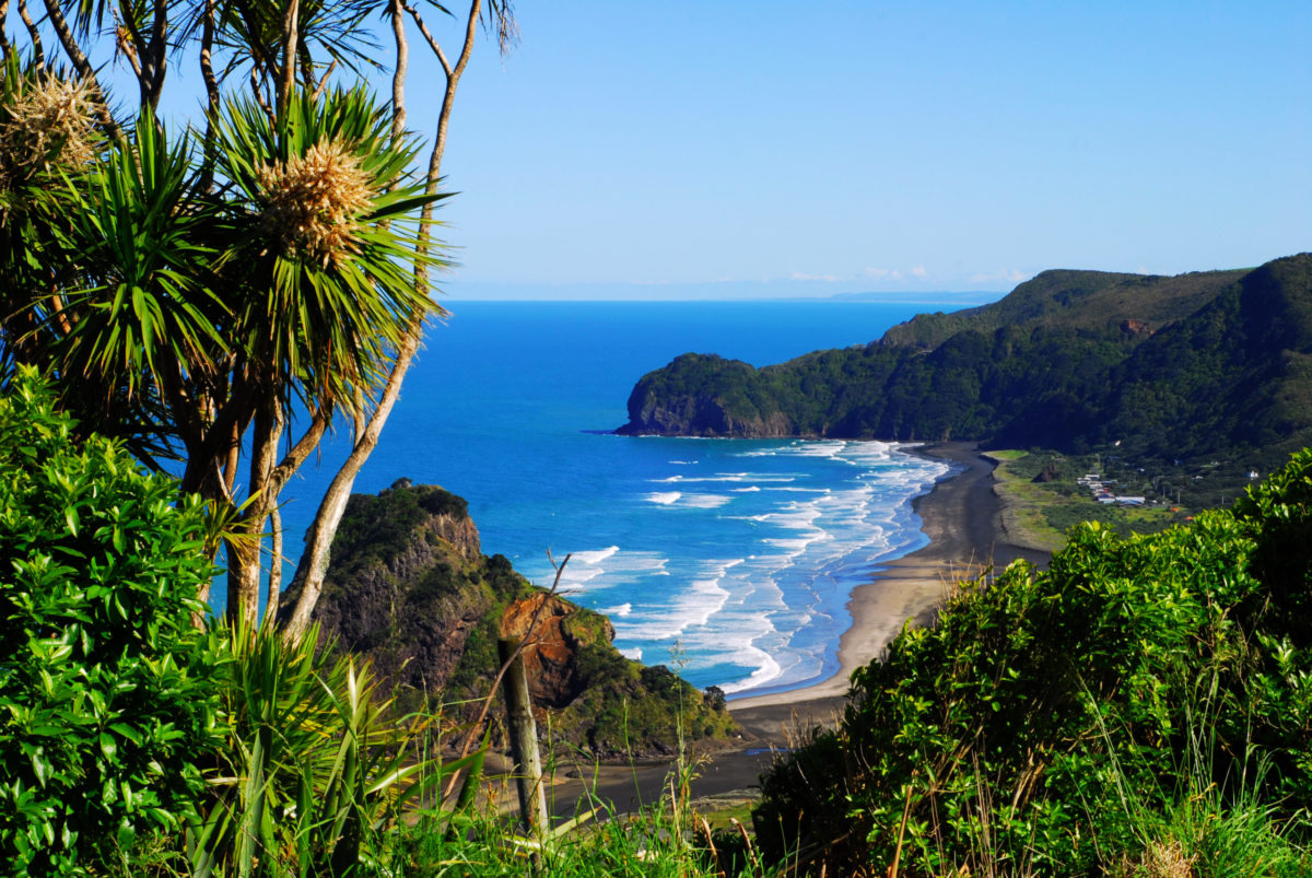 Surf Retreats In New Zealand