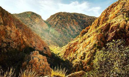 Larapinta Trail Experience – Jigsaw Travel Women's Retreat